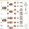 Комплектующие HYPERTHERM HPR130 / HPR260